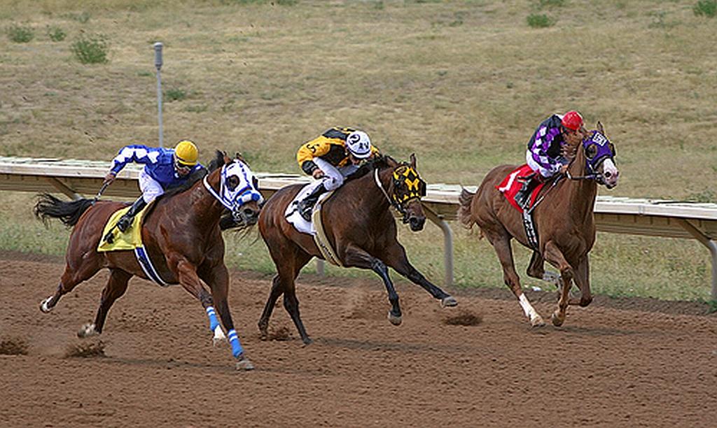 Handicap A Horse Race